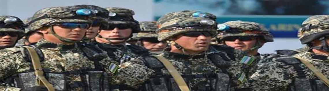 'Состав и численность армии Узбекистана