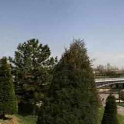 'Великолепные парки и скверы Ташкента