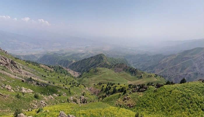 природа Кашкадарьи